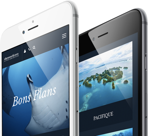 Name Mobile and Responsive view by 8 Ways Media SA